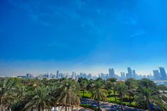 Palm trees and distant view of the city Royalty Free Stock Photo