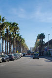 Palm trees and double decker barcelona Royalty Free Stock Images