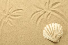 Palm Trees Drawn in the Sand. Summer Background with Shell. Beach texture. Copy space. Top view Royalty Free Stock Photo