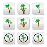 Palm trees, exotic holidays on beach  colorful icons set Royalty Free Stock Photos