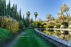 Palm trees, firs and lagoon in a garden. In Malaga, Spain Stock Image