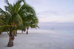 Palm trees over white sand beach and speedboat over turquoise lagoon at Maldives at sunset stock photography