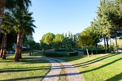 Palm trees in formal garden of summer park. Turkey Royalty Free Stock Photos