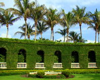 Palm trees and fountain - garden in Palm Beach, Florida stock image