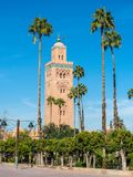 Koutoubia Mosque Kutubiyya Mosque in Marrakesh, Morocco, Afric. Palm trees in front of the Koutoubia Mosque Kutubiyya Mosque - the largest mosque in Marrakesh Stock Photography