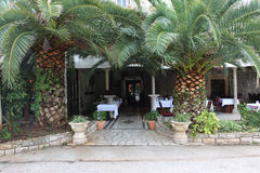 Palm trees. In front of the restaurant Stock Image