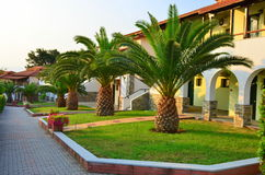Palm trees garden of a villas resort Royalty Free Stock Photo