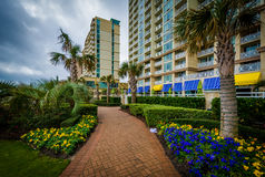 Palm trees and gardens along a walkway in Virginia Beach, Virgin Stock Photo