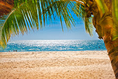 Palm trees gateway to sand beach in Cambodia. Royalty Free Stock Photography