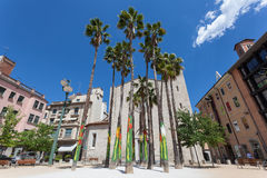 Palm trees in Girona, Spain Stock Photography