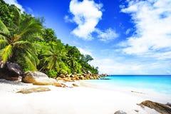 Paradise beach on the seychelles 11 Stock Photos