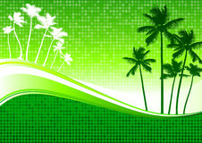 Palm trees green background Royalty Free Stock Photography
