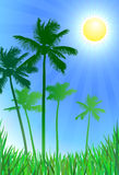 Palm trees green background Royalty Free Stock Photo