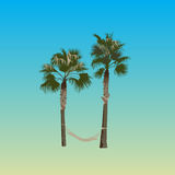 Palm trees with a hammock Stock Photo