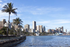 Palm trees harbor and Durban City skyline Royalty Free Stock Images