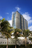 Palm Trees and High Rise Buildings on South Beach Stock Photos