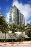 Palm Trees and High Rise Buildings on South Beach Royalty Free Stock Images