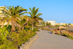 Palm trees and hotel buildings along coastal promenade Stock Images