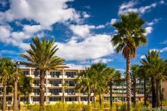 Palm trees and hotel in Clearwater Beach, Florida. Stock Photo