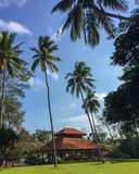 Palm trees and house in Balinese style. Exotic landscape from Bali island. Royalty Free Stock Images