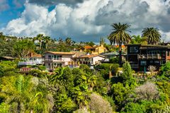 Palm trees and houses on a hill stock images
