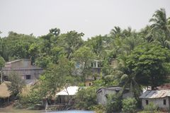 Palm trees and huts in Sundarbans national park, famous for Royal Bengal Tiger stock images