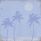 Palm Trees Illustration. Illustration graphic of palm trees and the moon on a blue background Royalty Free Stock Image