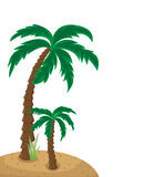 Palm trees illustration isolated on white Royalty Free Stock Photo