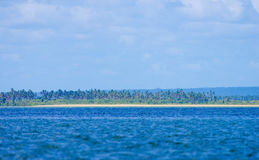 Palm trees and island in Mozambique Royalty Free Stock Image