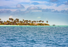 Palm trees on island in  sea Royalty Free Stock Images