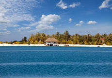 Palm trees on island in sea Royalty Free Stock Photo
