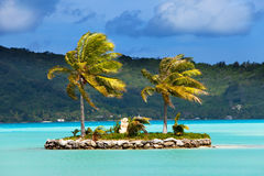 Palm trees on island in the sea and mountains Royalty Free Stock Photos