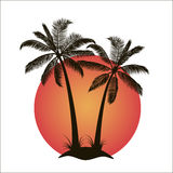 Palm trees with island at sunset Royalty Free Stock Photos