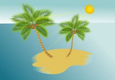Palm trees island Royalty Free Stock Image