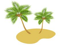 Palm trees island. Vector illustration of  island with  palm trees isolated Royalty Free Stock Photo