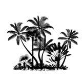 Palm trees island Royalty Free Stock Photo