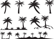 Palm trees and islands Stock Images