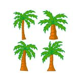 Palm trees isolated white background Vector Design royalty free stock photos