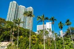 Palm trees in Kowloon Park of Hong Kong Royalty Free Stock Photos