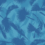 Palm trees leaves pattern blue Stock Photos