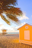 Palm trees and lifeguard house Stock Photography