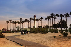 Palm trees line. embankment on sunset, California, USA. Long bea Royalty Free Stock Photos