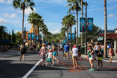 Palm trees line the street at Disney's Hollywood Studios Stock Photography