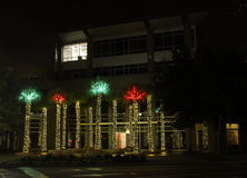 Palm trees lit up for Christmas on Daniel Island. Royalty Free Stock Photography