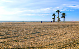 Palm trees on a lonely beach. Of Roquetas de Mar in the Spanish province of Almeria on a sunny day royalty free stock image