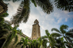 Palm trees and the Manila Cathedral, in Intramuros, Manila, The Stock Images