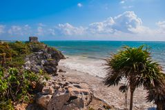 Palm trees and Mayan ruins in the background. Riviera Maya on the Caribbean. Tulum, Yucatan, Mexico.  stock photos