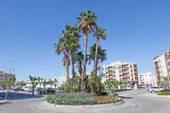 Palm Trees in Miami Platja, Spain Royalty Free Stock Photography