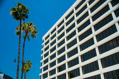 Palm trees and modern architecture Stock Image