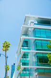 Palm trees and modern architecture Royalty Free Stock Image